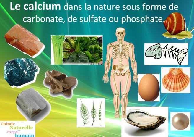 La Chimie_Naturelle du Corps Humain - ostéopénie et ostéoporose - la Calcium dans la Nature sous forme de carbonate, sulfate, phosphate
