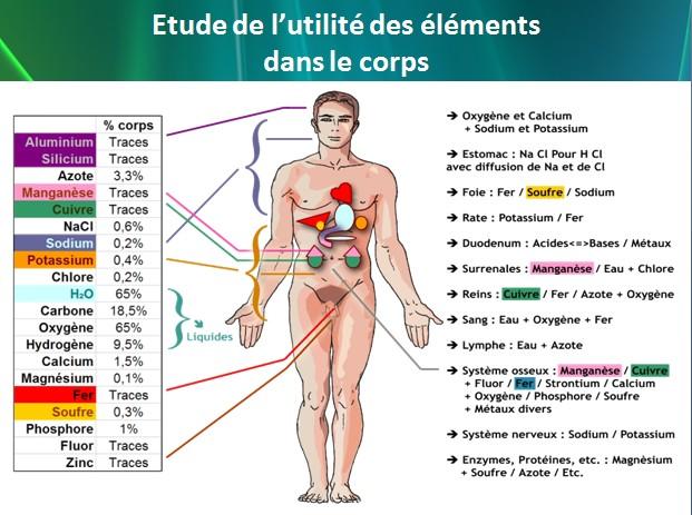 Chimie Naurelle - étude de l'utilité des éléments dans le corps humain.